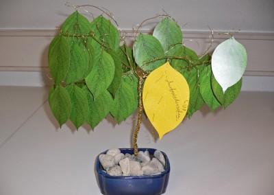 bk_kartenwerke_bonsai_1